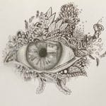 ink and pencil drawing of an eye with foliage around it