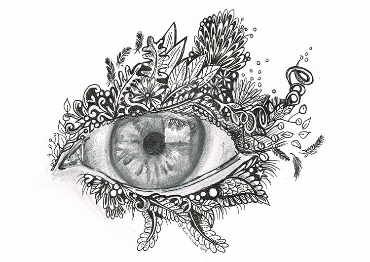 Graphite and ink drawing of an eye surrounded by wildlife as the eyelids.