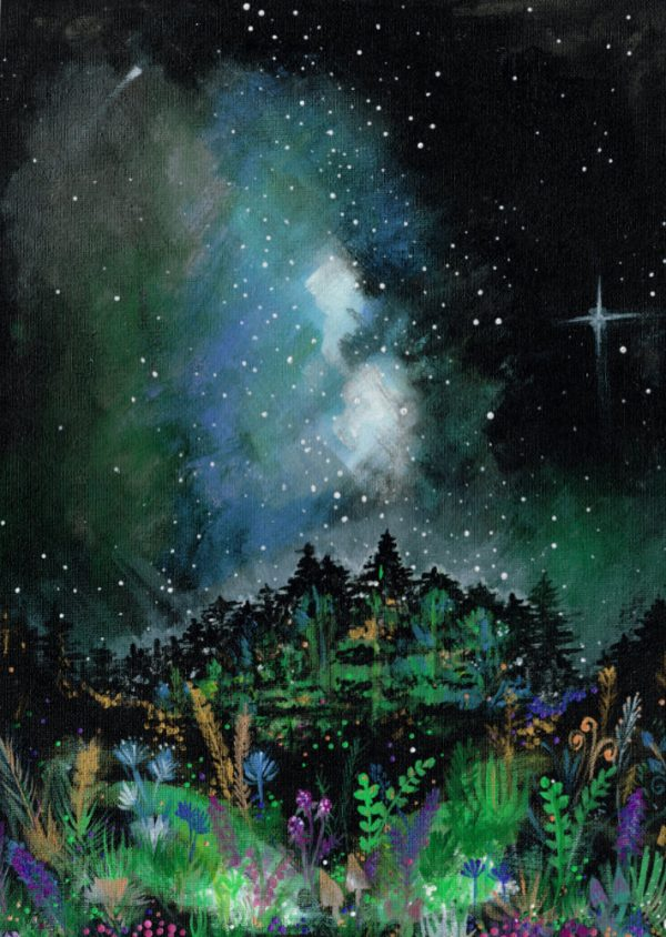 Starry night over some woods with colourful plants in foreground