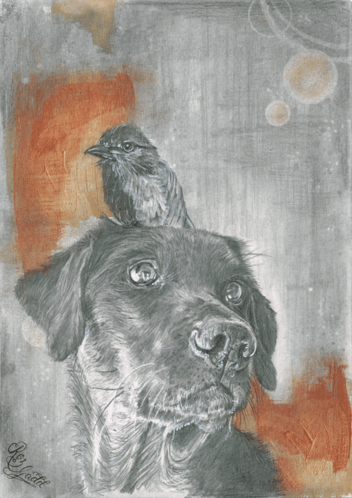 Graphite drawing of a black labrador with a bird stood on his head.
